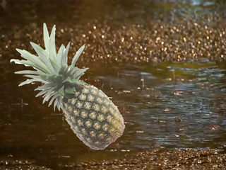 Pineapple Express to blame for California's rain