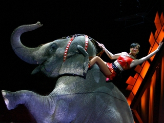 Ringling Bros. Circus is calling it quits