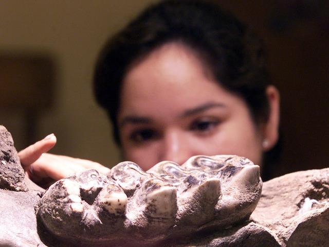 story neanderthals california maybe provocative says
