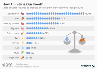 Infographic: How thirsty is our food?