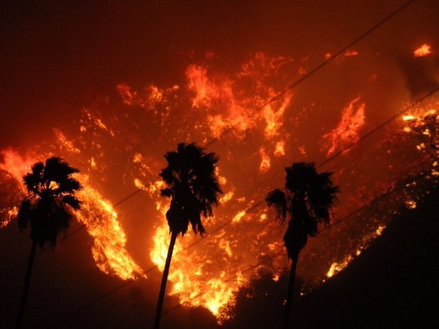 30 horses killed as wildfires consume 83000 acres near LA