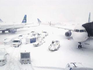 Fight, delays at JFK Airport