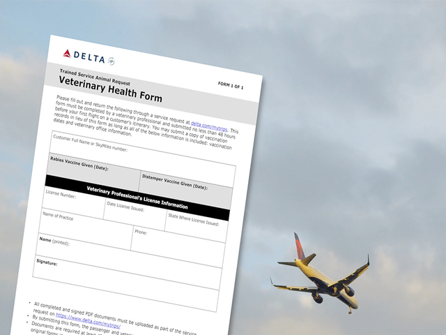 Delta Air Lines Will Need Certification Of Pet's Behavior, New Regulations State