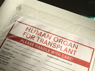 First male genitals transplant successful