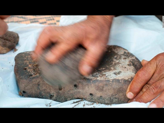 World's oldest bread found in Jordan