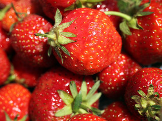 Probe launched after needles found in berries