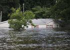 Hurricane Florence death toll rises